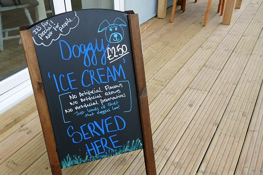 Doggy ice cream at The Beach Deck, Eastbourne, East Sussex