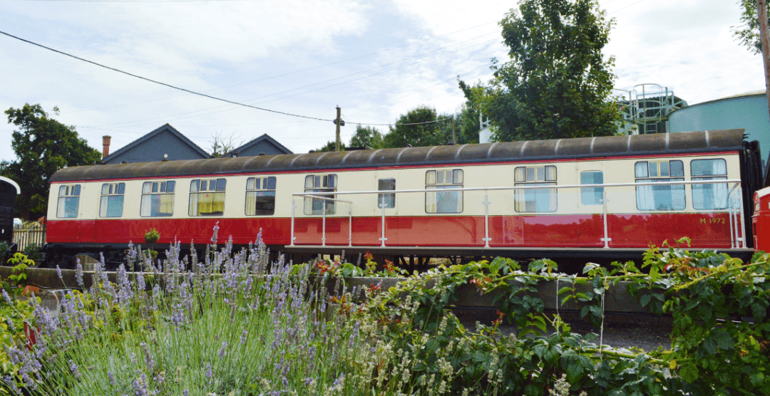 quirky-sussex-stays-train
