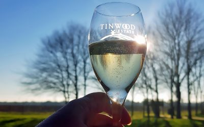 Tinwood wine tasting, a superb day out in West Sussex
