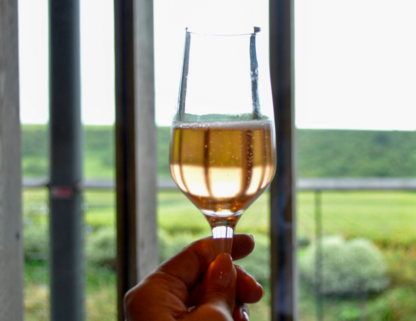 Rathfinny wine estate